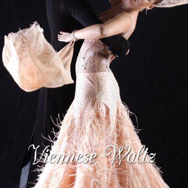 Viennese Waltz Dance Lessons